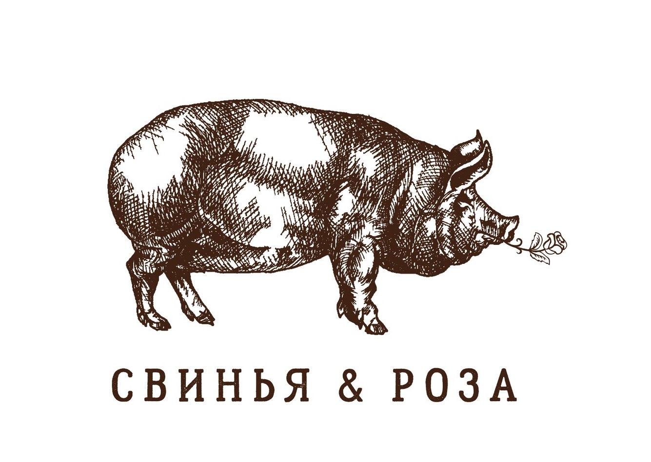 Свинья & Роза